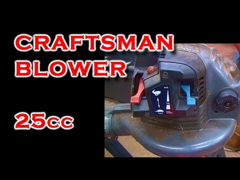 25cc Craftsman Leaf Blower with Seized Motor