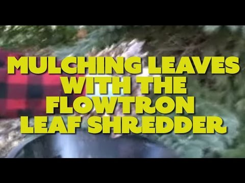 Mulching Leaves with the Flowtron Leaf Shredder
