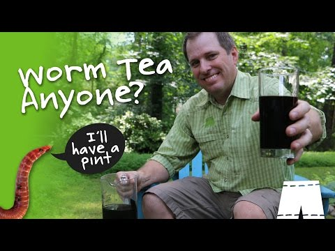 How To Use Composting Worm Leachate [It's Not Tea Yet]