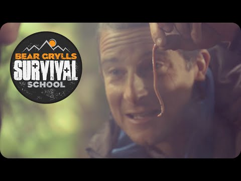 Bear Grylls Survival School: Eating Worms