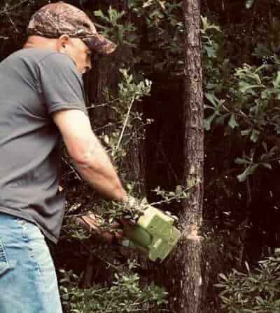 Greenworks chainsaws are useful tools for homeowners wanting to clean up limbs, small trees, and debris around their yard.