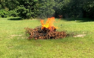 Toxins are released into the environment when we burn brush.