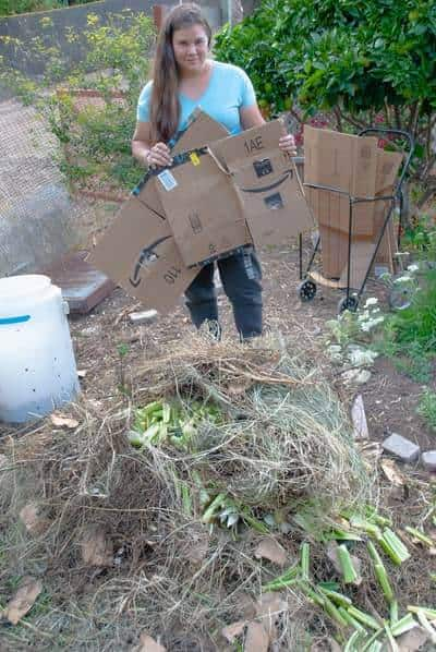 Me composting with Amazon Boxes.