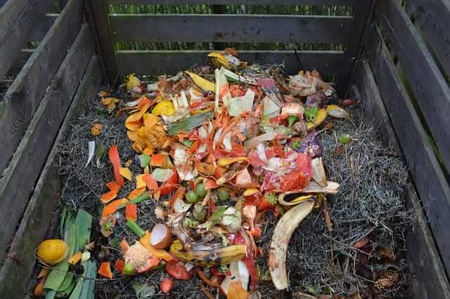 Can Compost Go Bad?