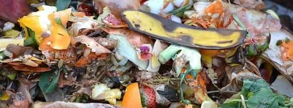 Kitchen vegetable scraps provide nitrogen for your compost pile.
