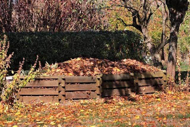 How Compost Is Made: The Definitive Guide