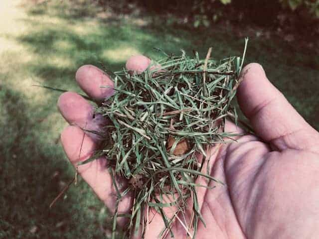 Make Free Compost With Grass Clippings And Other Yard Debris