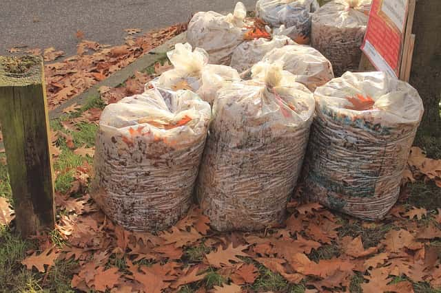 Compostable trash bags are good for the environment.