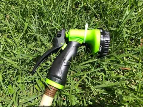 Regular over watering of your lawn will result in shallow rooting and reduced drought tolerance.