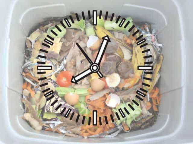 How Long Does Vermicomposting Take?