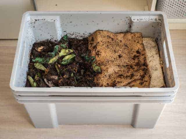Best places to keep a vermicomposting bin.