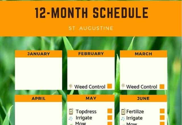 St Augustine Lawn Care Fertilizer Schedule Free Printable