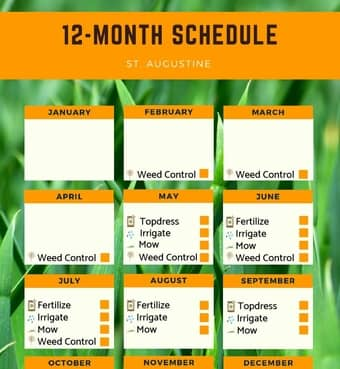 St. Augustine Fertilization Schedule and Irrigation Maintenance Monthly Planner.