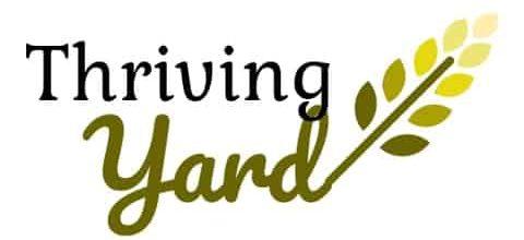 Thriving Yard