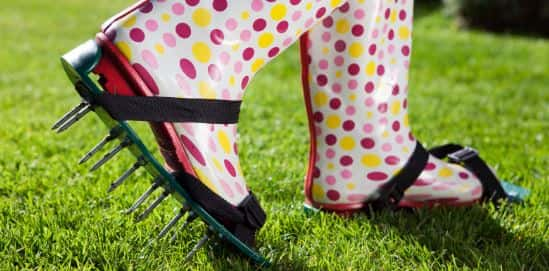 Buying or renting lawn aeration equipment can improve the quality of your soil and lawn. Spike shoes can't.