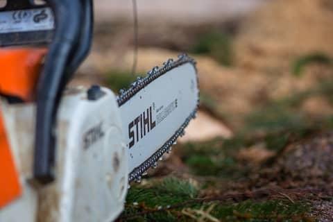 Stihl vs ECHO chainsaw.