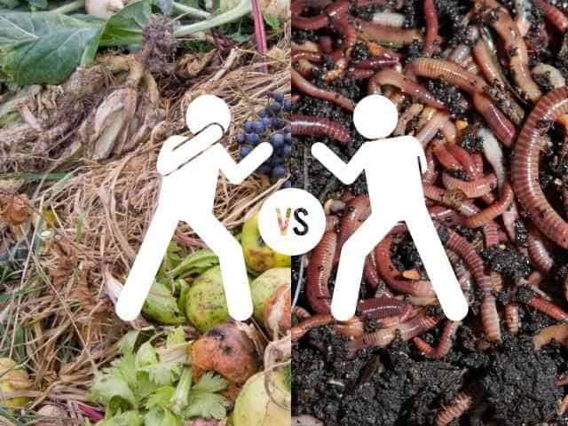Which is better? Traditional compost or vermicompost?