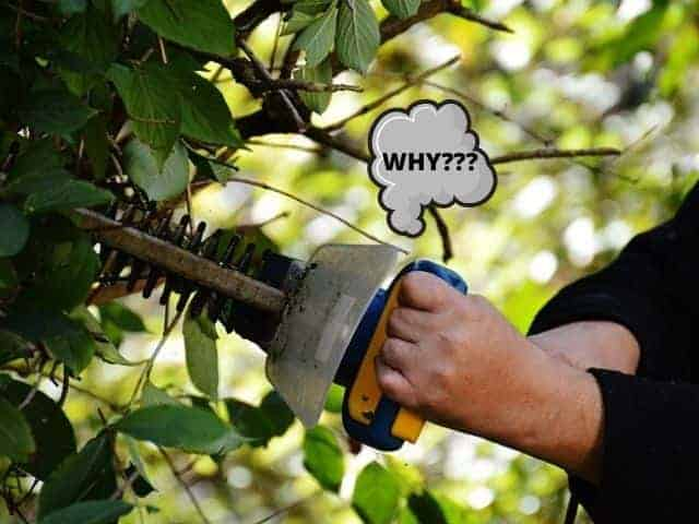 Causes for a hedge trimmer to smoke when used.