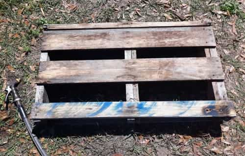 Pallet for garden bed cut in half.