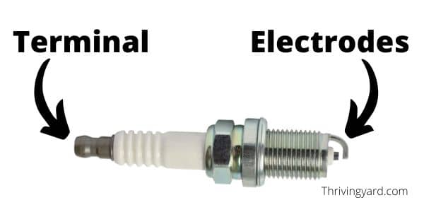 A fouled spark plug is a common reason for an ECHO weed eater not starting.
