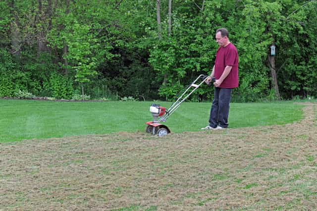 Options for cleaning up after dethatching your lawn.