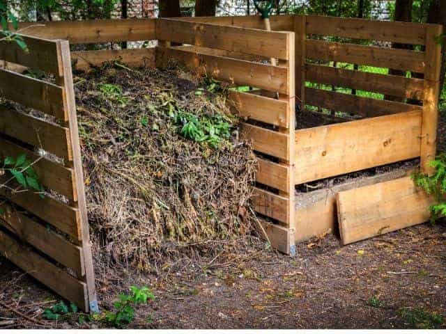 How to compost your kitchen scraps