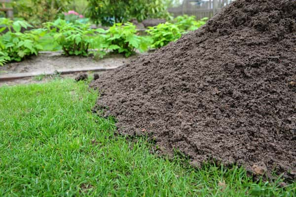 Adding compost to lawn or garden to improve quality and decrease compaction.