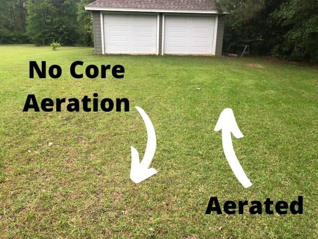 Does Lawn Aeration Really Work? Side By Side Comparison