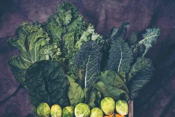 Leafy green vegetables can thrive in an indoor garden assuming they are provided with sufficient light, moisture, and nutrients.