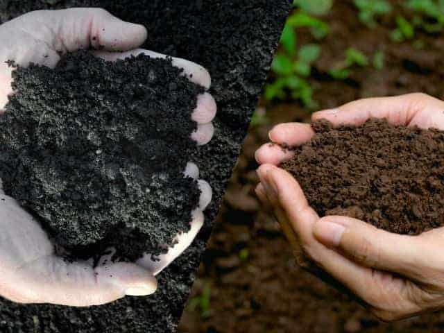 Soil Conditioner vs. Compost What's the Difference?