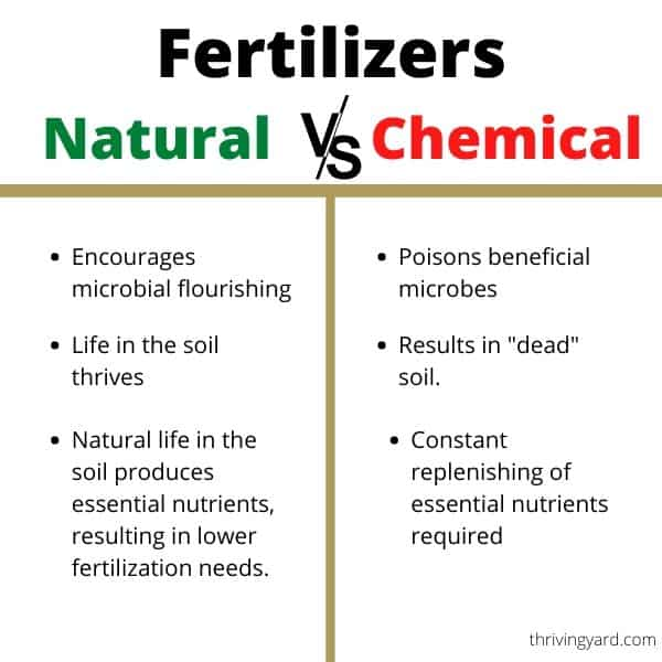 Longterm effect of natural vs chemical fertilizers on soil and lawn health.