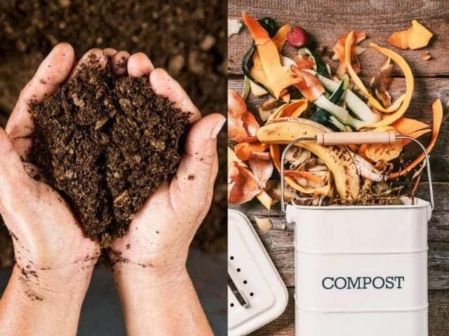 Active Composting vs. Passive Composting
