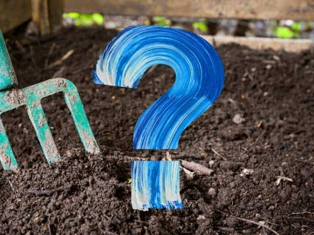 Does Compost Turn Into Soil? The Misunderstood Facts