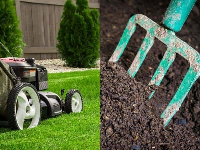 Can Compost Burn Your Lawn? Let's Talk Facts