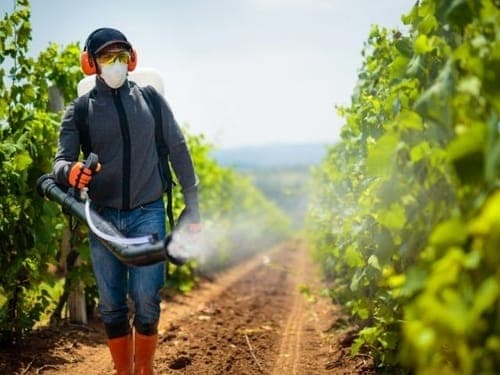 Pesticides are often sprayed on farming crops to control pests.
