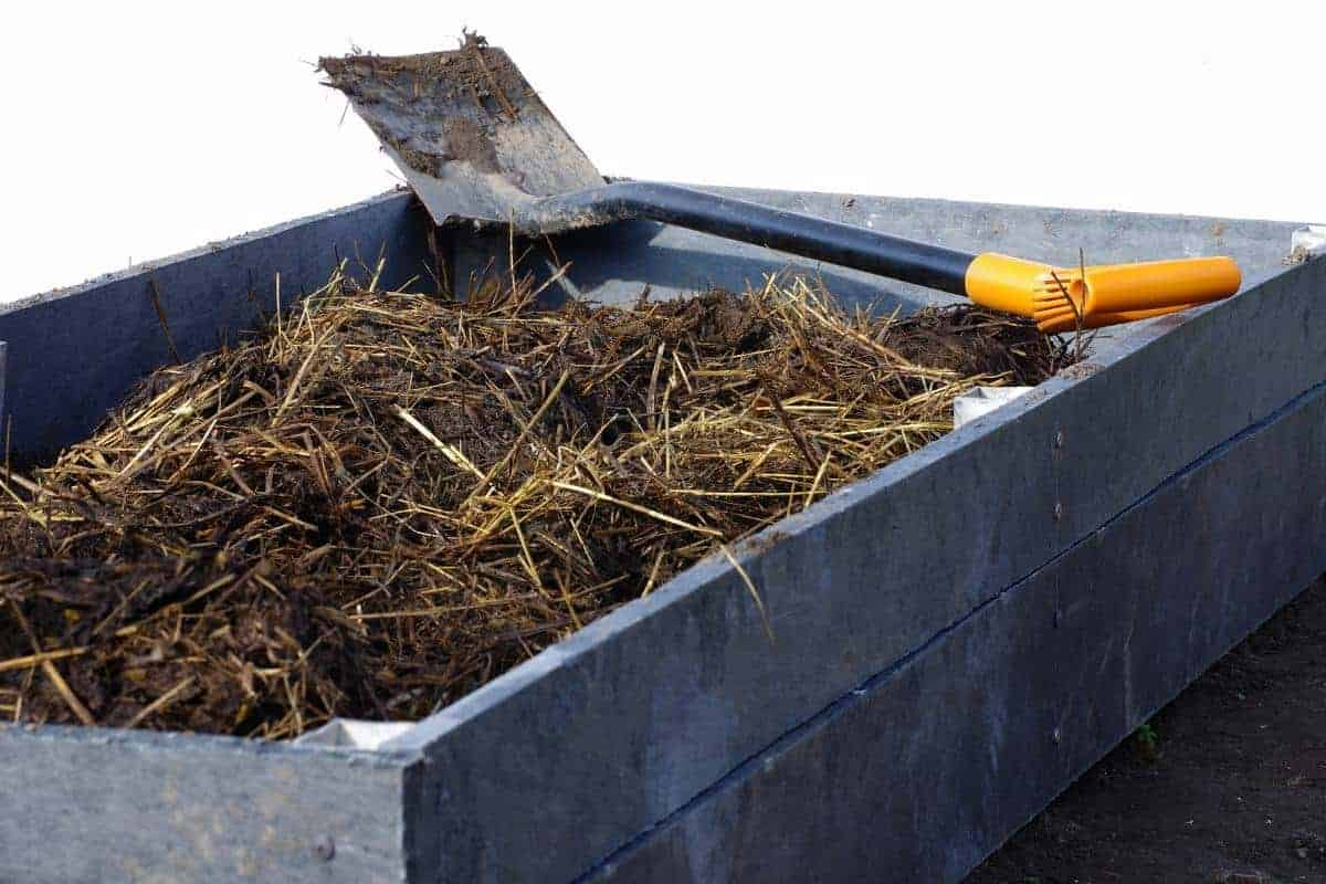 Best types of wood to use for raised beds.